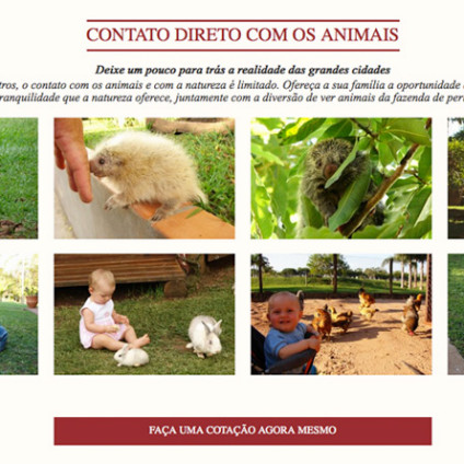 projeto-web-hotel-fazenda-brotas-jacauna-2