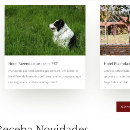 projeto-web-hotel-fazenda-roseira-5